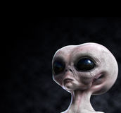 Grey alien portrait with composition area Stock Photography