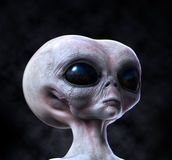 Grey alien portrait on dark background Stock Image