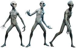 Grey aliens 3D illustration. A group of grey aliens 3D illustration Stock Images