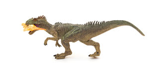 Grey allosaurus toy catching a smaller disonaur on white Royalty Free Stock Image