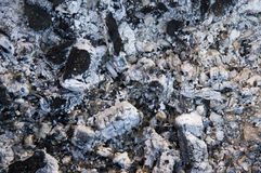 Grey ashes and coals are burned. Royalty Free Stock Images