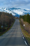 Grey asphalt road. In Norvegian green mountains Royalty Free Stock Photography