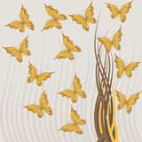 Grey background with   butterflies Royalty Free Stock Photography
