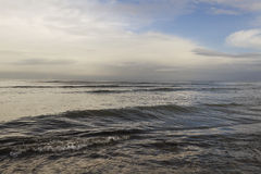 Grey Baltic sea. Stock Images