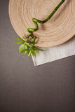 Grey bamboo  background with empty copy space Royalty Free Stock Images