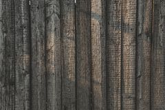 Grey Barn Wooden Wall Planking Wide Texture. Old Solid Wood Slats Rustic Shabby Gray Background. Dark Hardwood Weathered Square Surface. Grungy Faded Timber Royalty Free Stock Photos
