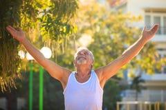 Grey Bearded Old Man in den Westen-Aufzug-Händen schaut oben im Park stockbild