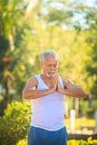 Grey Bearded Old Man in der weißen Weste zeigt Yoga im Park lizenzfreie stockbilder