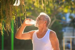 Grey Bearded Old Man in der Weste hält Wasser-Flasche im Park stockfoto