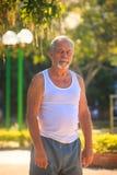 Grey Bearded Old Man in der Weste steht im Park durch Straßenlaternen stockbild