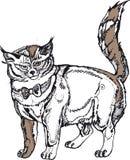Grey big cat Royalty Free Stock Photo