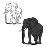 Grey big elephant (for coloring) Stock Photo
