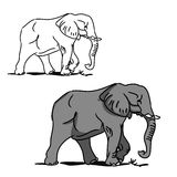 Grey big elephant (for coloring) 0 Stock Photo