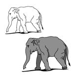 Grey big elephant (for coloring) 02. Graphic image of a large elephant. The picture of a gray elephant on a white background. The contour of the animal. Vector Vector Illustration