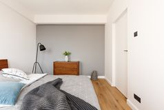 Grey blanket on bed in minimal bedroom interior with plant on ca. Binet next to lamp. Real photo Photo concept stock photo