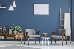 Grey and blue living room. Plant on white table between grey armchairs in blue living room interior with posters and wooden cupboard Royalty Free Stock Photography