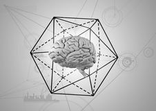 Grey brain with black hexagon against white background. Digital composite of Grey brain with black hexagon against white background Stock Image
