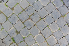 Grey brick floor in curve shape. Grey colour brick floor in curve shape stock photos