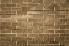 Grey brick old wall Stock Images
