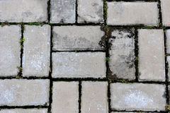 Grey bricks Stock Photography