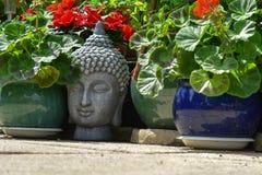 Grey Buddha huvud bland trädgårds- växter Royaltyfri Foto