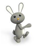 Grey bunny with walking pose Stock Image