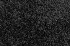 Grey carpet Stock Photography