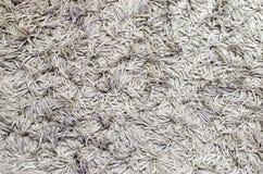 Grey Carpet Texture blanco para el fondo imágenes de archivo libres de regalías