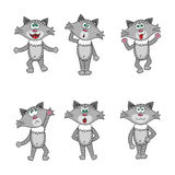 Grey cartoon style  cats or kittens set Stock Image