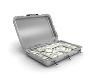 Grey case with money Stock Images