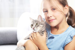 Grey cat Royalty Free Stock Photo