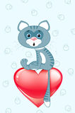 Grey cat on heart Royalty Free Stock Photos
