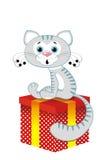 Grey Cat On A Box Stock Photo