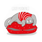 Grey cat on red pillow. Good morning, vector illustration Royalty Free Stock Image