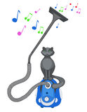 Grey cat sits on a vacuum cleaner Royalty Free Stock Photo