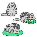 Grey Cats Emoticons Set Illustrazione isolata di vettore Fotografia Stock Libera da Diritti