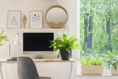 Grey chair at desk with plant in bright home office interior with window and posters. Real photo stock image