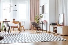 Grey chair in living room. Grey chair at table with pink vases and patterned carpet in cozy living room interior with dining table and wooden chairs Royalty Free Stock Photos