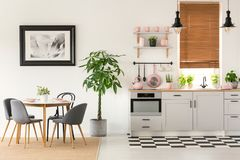 Grey chairs at dining table in bright interior with poster and p. Lant next to kitchenette. Real photo concept stock images