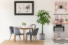 Grey chairs at dining table next to plants in kitchen interior w. Ith poster and pink accessories. Real photo concept stock photos