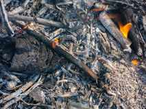 Grey charcoal pattern in fire. Ashes Royalty Free Stock Photo