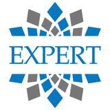 Grey Circular bleu expert Photographie stock
