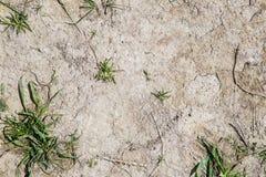 Grey Clay dans la sécheresse Image libre de droits