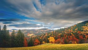 Grey clouds float over coloured mixed forests covering hills stock footage