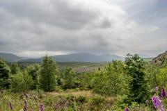 Grey Clouds Over Landscape imagen de archivo libre de regalías