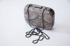 Grey clutch Royalty Free Stock Image