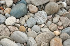 Grey cobbles rounded by river erosion at a former river bed. Perfect for texture or background Royalty Free Stock Photos