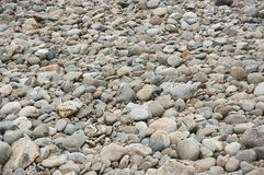 Grey cobbles rounded by river erosion at a former river bed. Perfect for background or texture Royalty Free Stock Photos