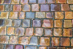 Grey cobblestone pavement after the rain Royalty Free Stock Images
