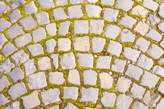 Grey Cobblestone walkway pattern. Grey Cobblestone walkway background texture pattern with moss growing in gaps Royalty Free Stock Photos